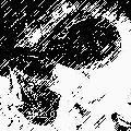 DATE_Monkey