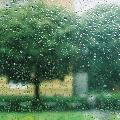 <~Rainny~>