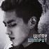 winny_winnput