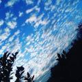 M sky
